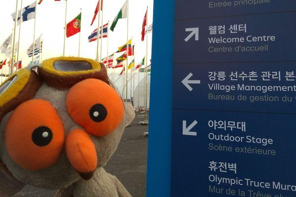 JO 2018: Cagou à l'esplanade du village olympique de Gangneung
