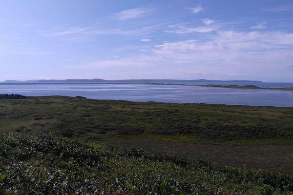 A la découverte de Miquelon