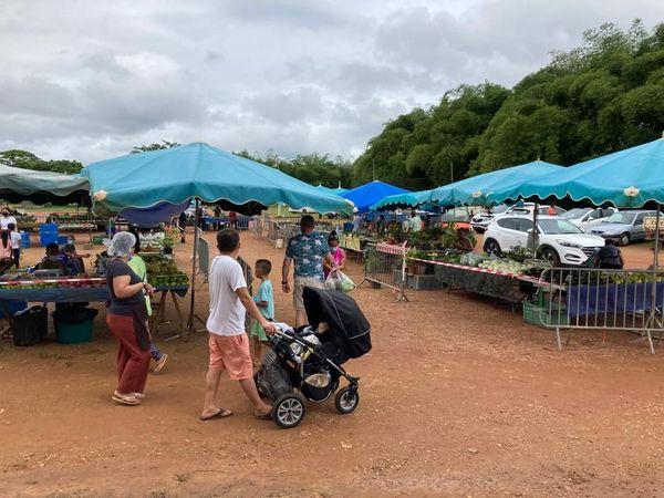 Le marché délocalisé de Cacao