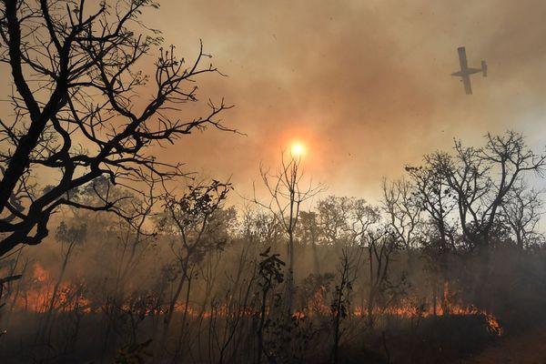 Incendie Brésil