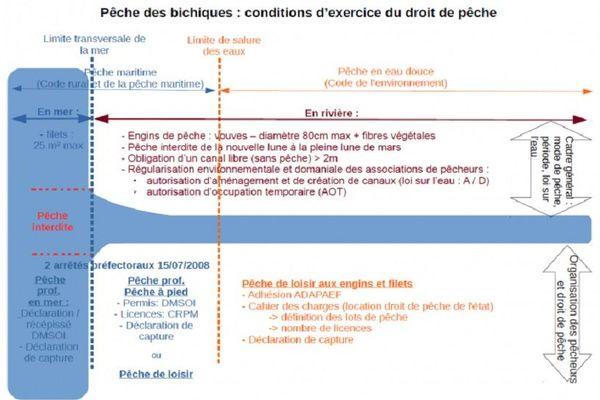 pêche des bichiques réglementation