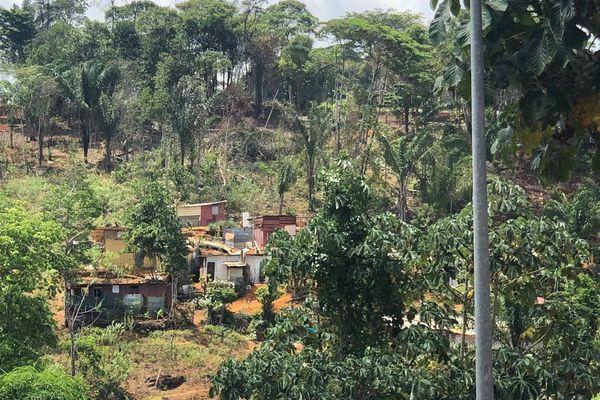 L'évolution de l'habitat illégal à la Cotonnière à Matoury