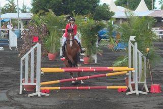 3éme rencontres équestres internationales à Saint-André chevaux 100319