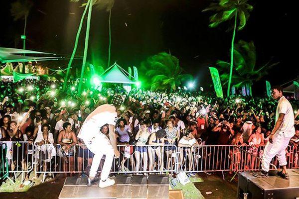 Baccha festival 2017