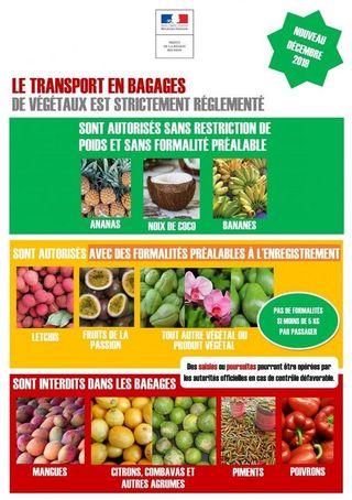 export de végétaux fruits dans bagages réglementation 031219