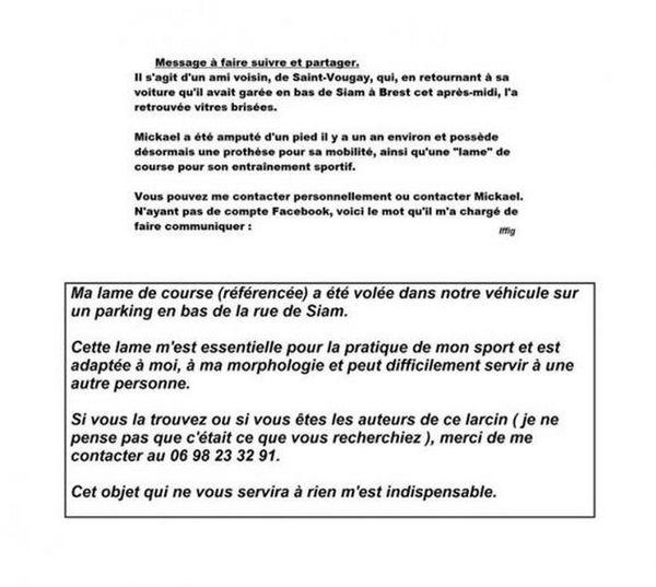 Message Facebook de Mikaël Lamour