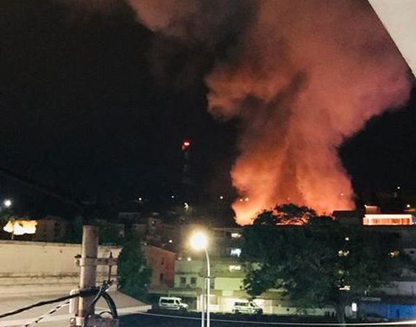 Incendie animalerie 4-5 novembre 2018
