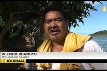 Wilfrid Ruamutu, chasseur de crabes