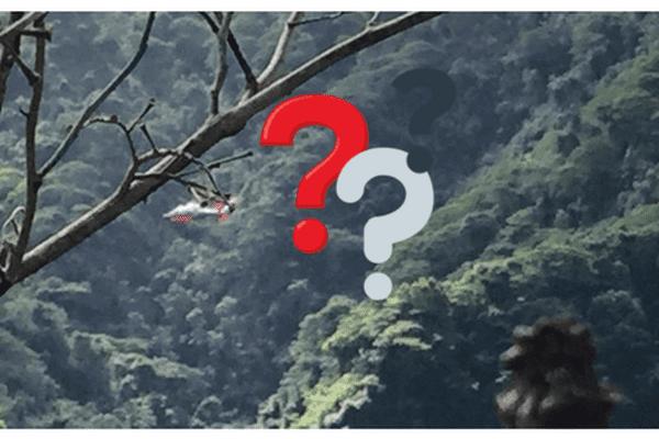 Sauvetage en cours pour retrouver 2 randonneurs isolés sur le plateau de Vaipahi