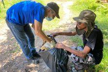 Une quinzaine de bénévoles se sont activés pour nettoyer la Crique Soumourou