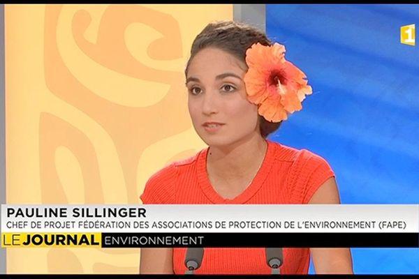 Invitée du journal : Pauline Sillinger, chef de projet à la Fédération des associations de protection de l'environnement (FAPE)
