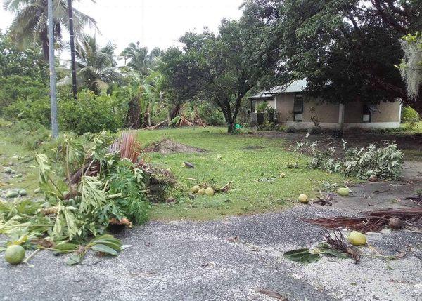 Jardin abimé Qanono Lifou cyclone Cook (10 avril 2017)