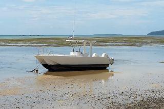 bateau illustre