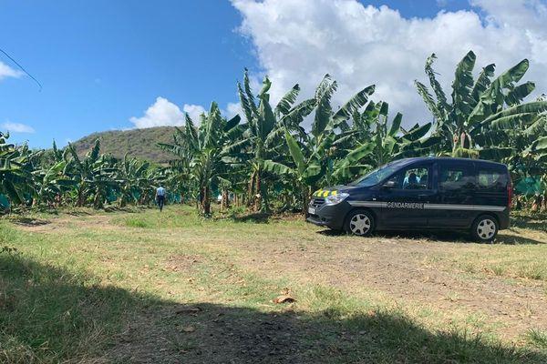 gendarmerie champs banane