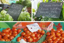 «Les légumes les plus impactés restent les salades, les choux, et les tomates», selon le dernier indice mensuel de l'Isee.