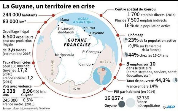 guyane infographie