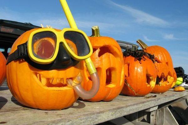 Halloween local