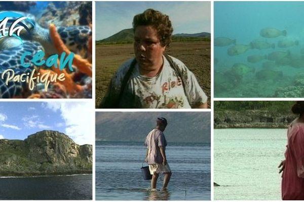 Vidéos. 24h sur l'océan Pacifique