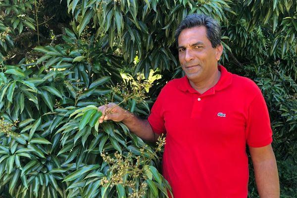 Marjean Camalon, producteur de letchis à Bras-Canot.
