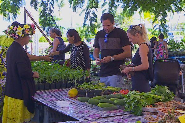marché du terroir / fruits et légumes