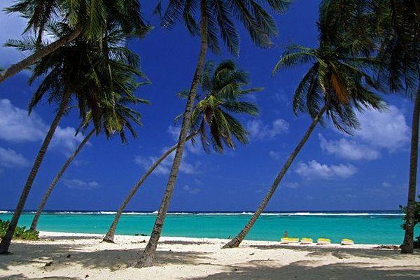Destinations Antilles en repli