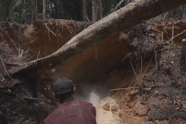 Ravage de l'orpaillage en Amazonie