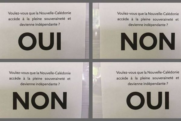 Référendum, mosaïque de bulletins
