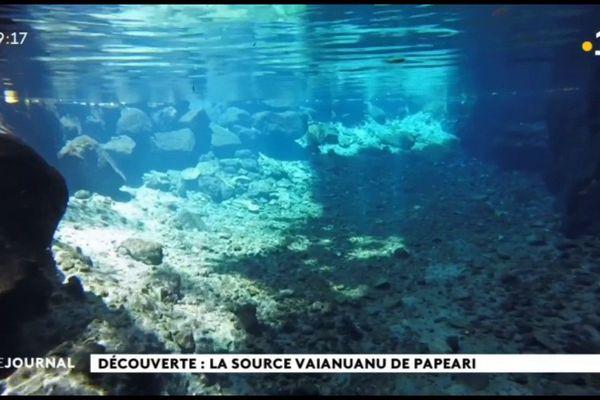 Découverte : la source Vaiamuanu de Papeari