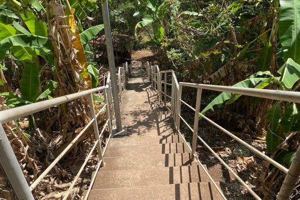 Agression à l'université de la Polynésie française