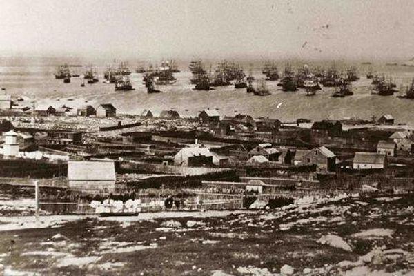St Pierre et Miquelon : la rade en 1865