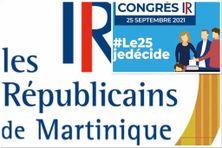 Congrès électronique LR du 25 septembre 2021.