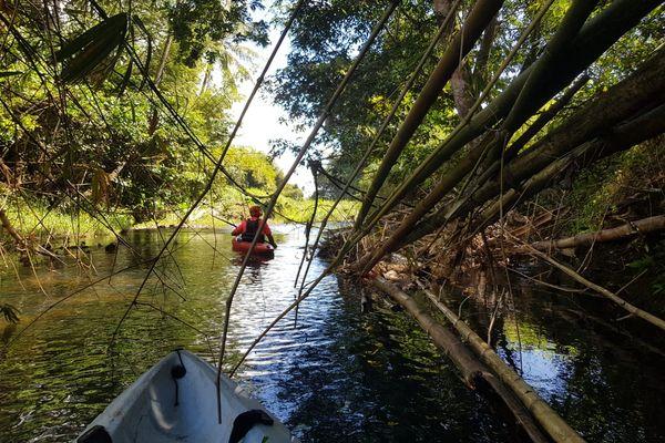 Recherche du corps d'un touriste septuagénaire, dans la rivière de la Lézarde - février 2021