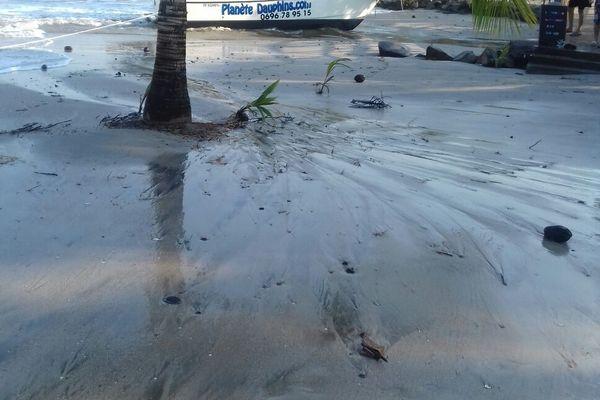 la plage et la houle