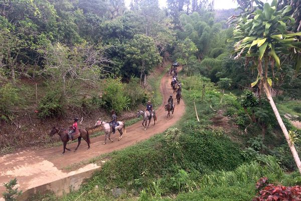 Camp à cheval en pays Ajië-Aro, janvier 2020