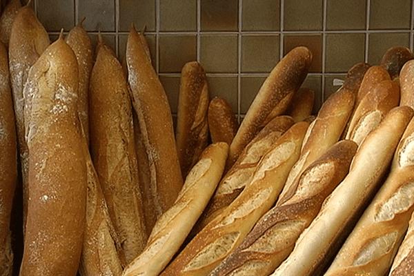eco pain nc