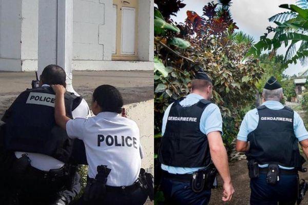 Police /gendarmerie