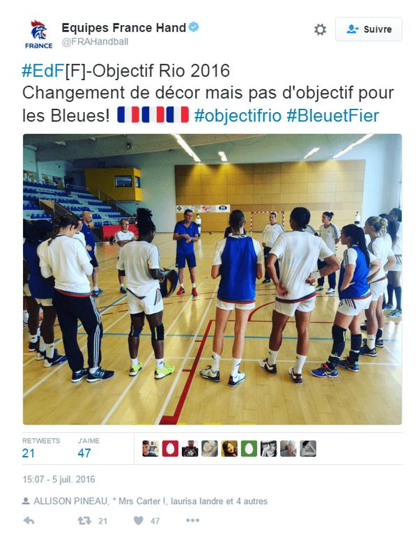 La handballeuse guadeloupéenne Allison Pineau victime d'une entorse de la cheville