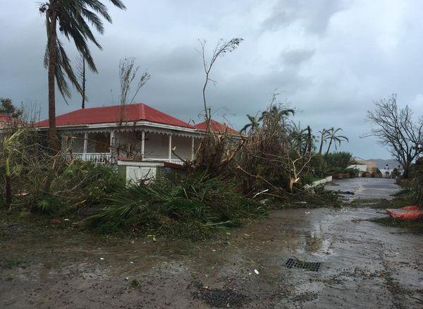 Saint-Barth Irma 40