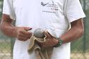 Calédonienne de pétanque : deux Calédoniens vainqueurs de l'Open doublette