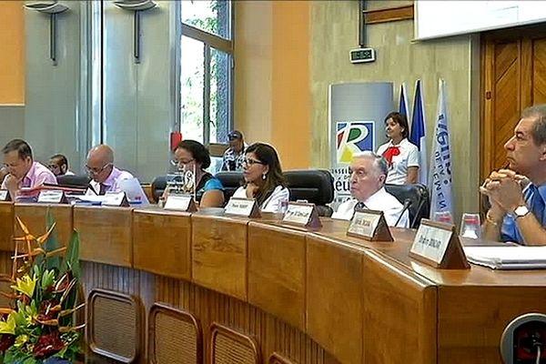 Réforme des collectivités territoriales : Conseil Général