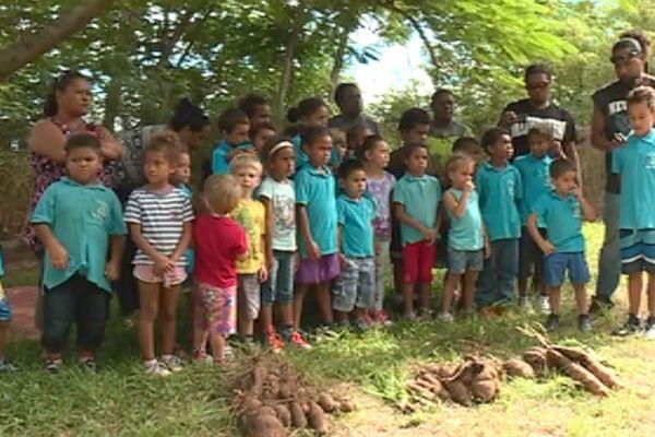 Récolte d'ignames 2018 par l'école de Moindou