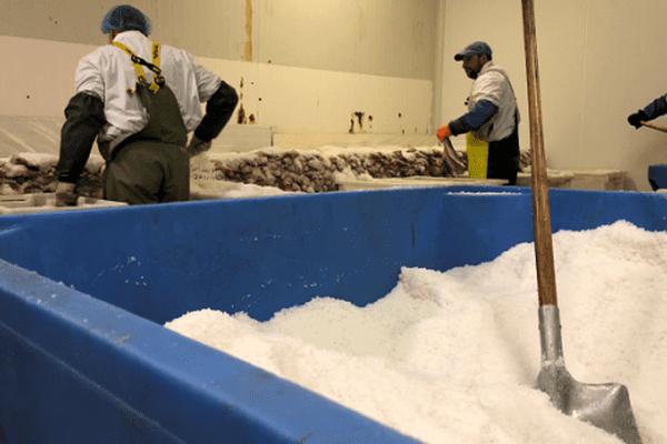 conseil consultatif des pêches