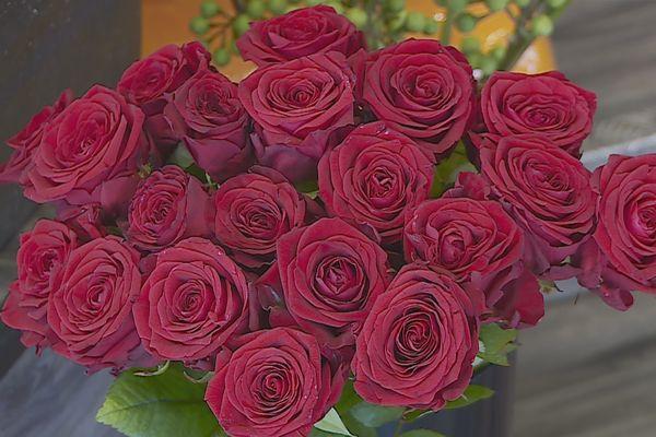 La saint-Valentin : Dites le avec des roses !