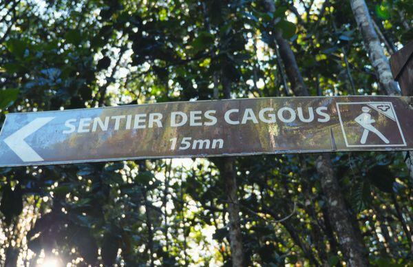 Préservation Cagous 3
