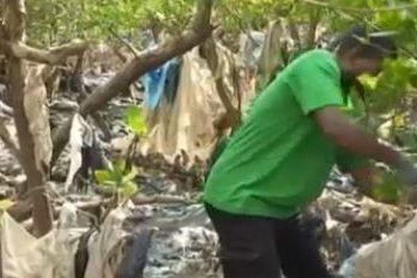 Nettoyage mangrove Majikavo