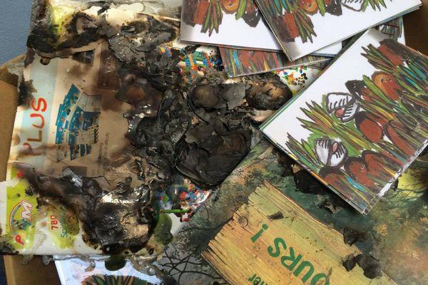 Livres d'enfant brûlés