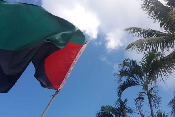 drapeau rouge vert noir