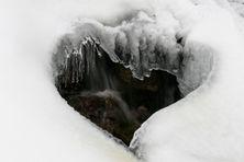 "Le ""cœur de glace"" de DanielleGoïcoëchéa"