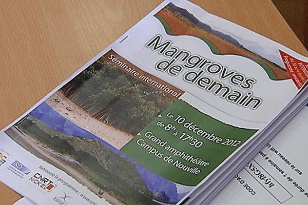 séminaire mangrove