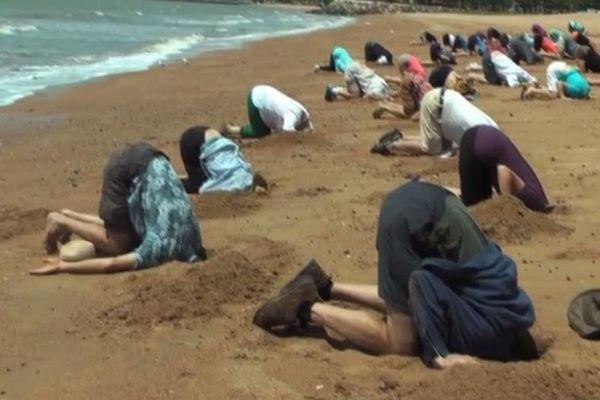 Réchauffement climatique : contre la politique de l'autruche, ils mettent la tête dans le sable